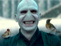 lord-voldemort-as-beast-with-birds